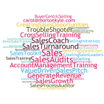 Interim Sales Director | Flexible Sales Management Solutions