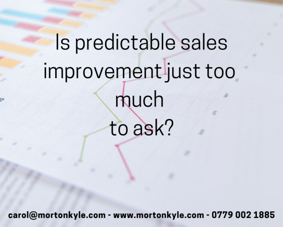 Sales Improvement & Business Development | Looking Beyond Sales Results