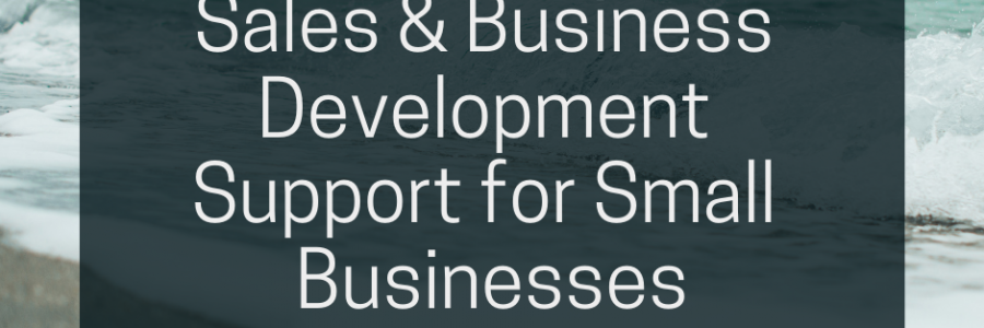 Small Business Development Agency – Sales & Business Development